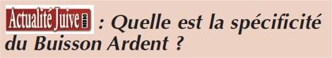 Quelle est la spécificité du Buisson Ardent ?